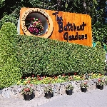 Menikmati 6 Pesona The Butchart Garden