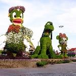Menjelajah Taman Ajaib di Padang Pasir