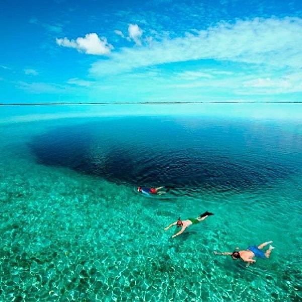 The Great Blue Hole, Destinasi Penyelam di Belize City yang Menakjubkan