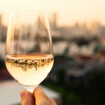 Rekomendasi Pinot Noir Putih yang Perlu Anda Coba
