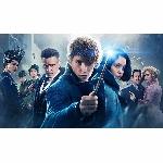 Warner Bros Pastikan Fantastic Beast 3 Rilis 2021