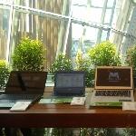 Rilis Di Indonesia, Ini Deretan Komputer Yang Adopsi Endless OS