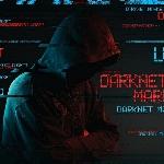 Bahaya Mengintip, 15 Miliar Akun Data Pribadi Dijual Bebas di Dark Web