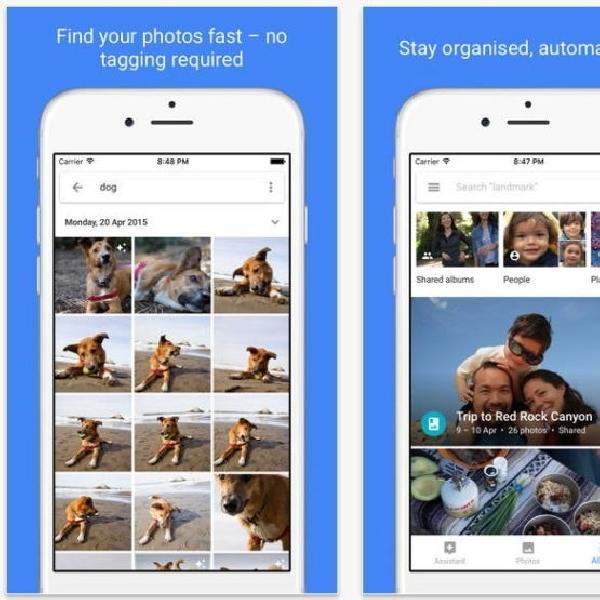 Google Photos Kini Bisa Simpan 3300 Foto dalam Satu Album, Ini Caranya