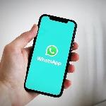 Maksimalkan WhatsApp dengan 6 Trik Ini