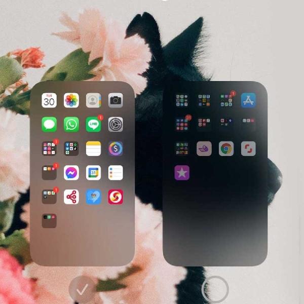 6 Fakta Unik iPhone 12 yang Belum Banyak Diketahui