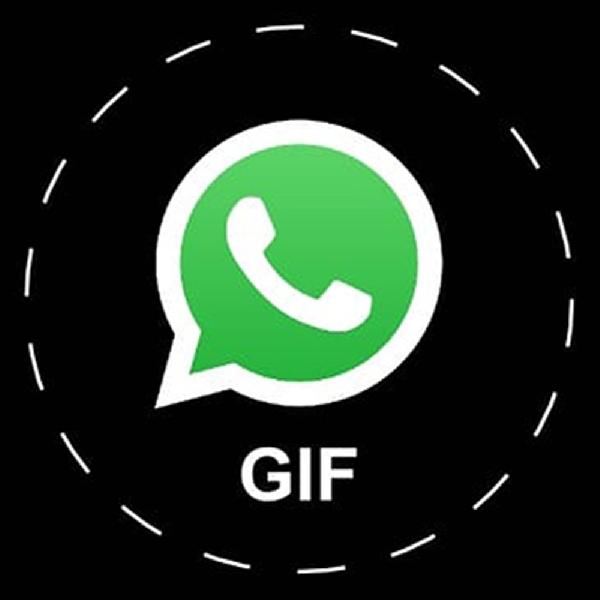 Seru, Ini Cara Ubah Video Jadi GIF Di WhatsApp