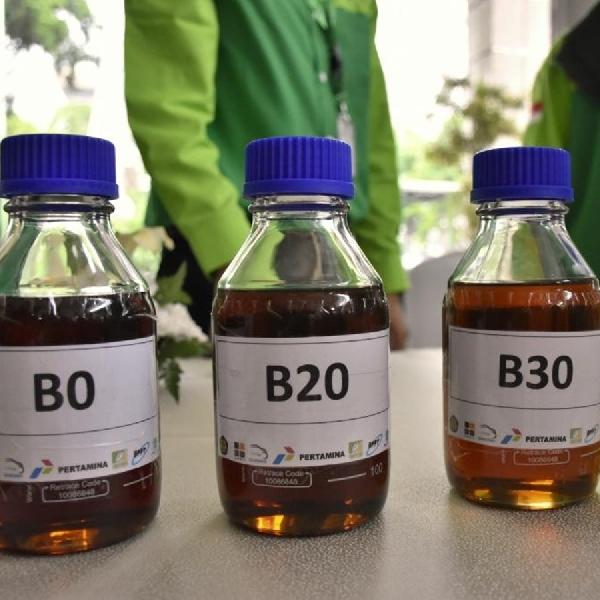 Jamin Biodiesel Aman, Pemerintah Terus Kenalkan B30