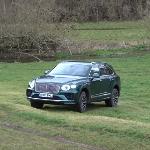 Ternyata, Bentley Bentayga V8 Juga Bersinar di Jalanan Off-Road