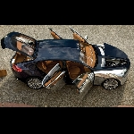 Bugatti Tepis Isu Kehadiran SUV, Ada Kejutan Lain di Anniversary ke-110
