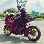 Kawasaki Ninja 150RR, Pesan Heroik Pada Bodykit Ducati  Panigale