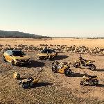 Honda Australia Meluncurkan NSX Hybrid Berlapis Emas