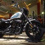 Harley Davidson Bawa Dua Moge Baru di IIMS 2019