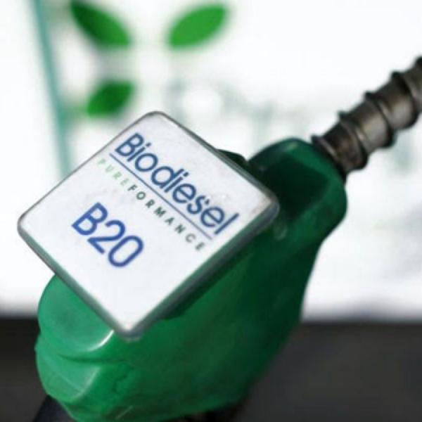 Biodiesel Naik, Ini Harganya per September 2019