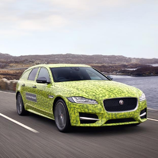 Kejutan Satu Dekade Jaguar