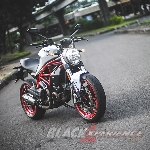 Ducati Monster 797 - Worthy Baby Monster