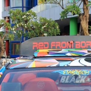 Rear wing Red From Borneo