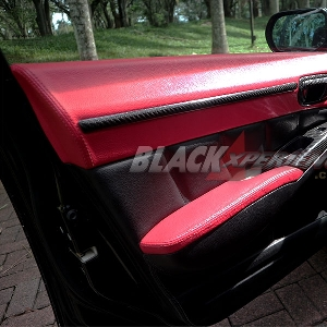 Door trim carbon