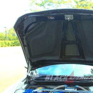Engine hood carbon fiber