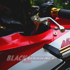 Modifikasi Ninja 250 FI dengan Body Kit Panigale 1199 Dambaan Kawula Muda