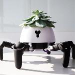 Robot HEXA