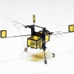 RoboBee, Micro Robot yang Bisa Berenang, Terbang dan Mendarat Sekaligus