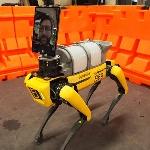 Spot, Robot Anjing Pembantu Tenaga Medis AS