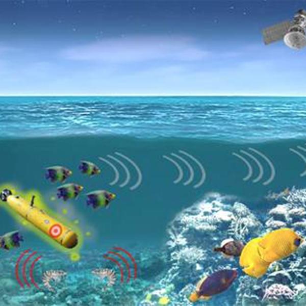 DARPA Manfaatkan Kehidupan Dasar Laut Untuk Pantau Ancaman