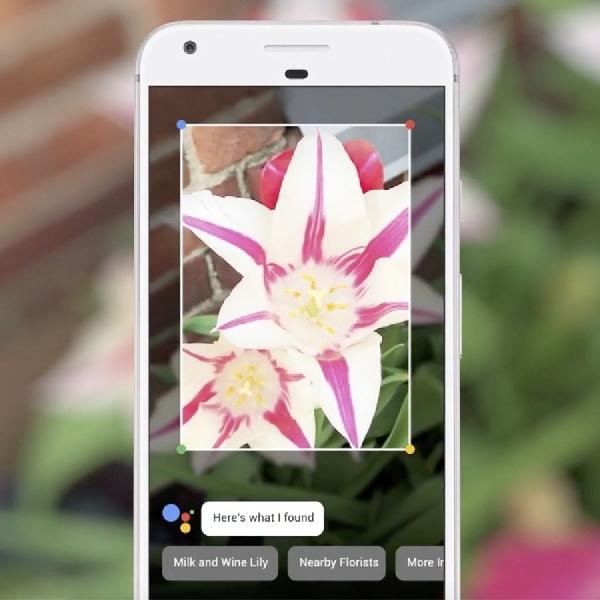 Google Lens Buat Kamera Ponsel Kenali Beragam Objek