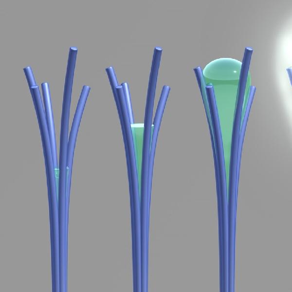 Nanorods, Ciptakan Air dari Udara Kering