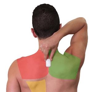 Perbaiki Postur Tubuh Dalam 2 Minggu Dengan Upright Go 2