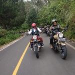 Royal Riders Ikut Lestarikan Terumbu Karang Ujung Genteng