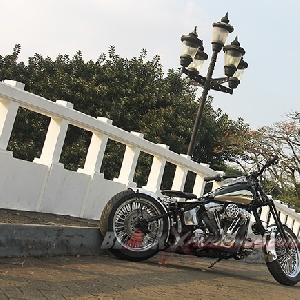 Tampak samping Harley-Davidson Softail EVO