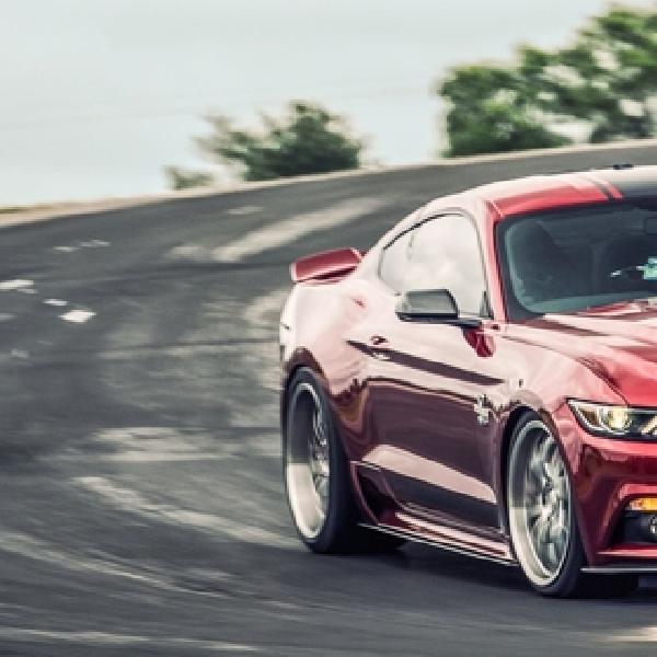 Exotic Car : Mustang Shelby Super Snake 2015